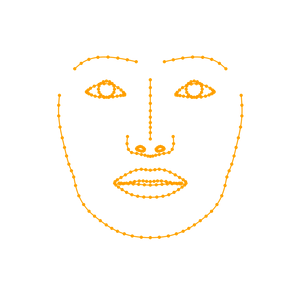Landmarks of different facial features, indicating the nose bridge, eyebrows, eyelids, irises, lips, and jaws. Points are scattered along the lines, both of which are colored in bright orange.